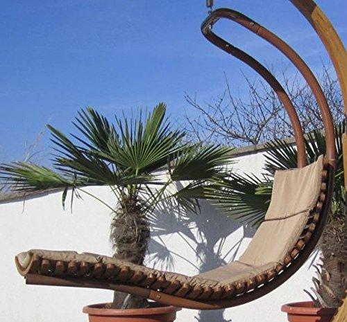 ass design h ngeliege navassa seat aus holz l rche metall mit auflage ohne gestell von farbe. Black Bedroom Furniture Sets. Home Design Ideas
