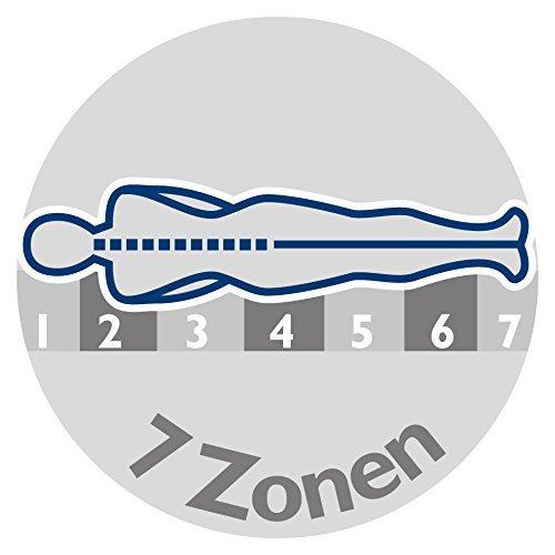 badenia 3888400159 bettcomfort irisette 7 zonen kaltschaummatratze vitaflex flextube h rtegrad. Black Bedroom Furniture Sets. Home Design Ideas